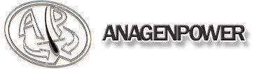 immagine del logo anagenpower